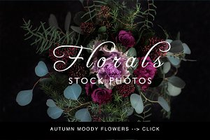 Moody autumn floral stock photos - 6