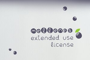 The Extended use license