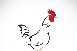 Vector of a cock design