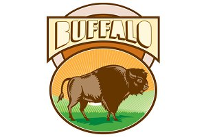 American Bison Buffalo Oval Woodcut