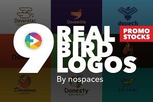 Real Awesome Bird Logos Bundle