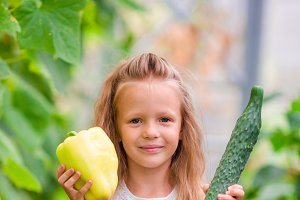 Little girl in greenhouse with green pepper and cucumber in hands. Time to harvest. Big basket full of vegetables