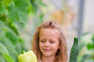 Little girl in greenhouse with pepper and cucumber in hands. Time to harvest. Big basket full of vegetables