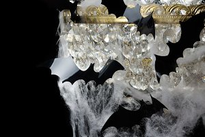 Bats in the web of the chandelier