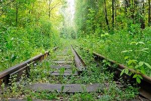 Abandoned railroad