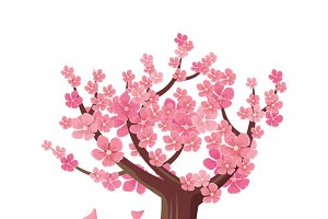 Sakura Tree Isolated. Cherry Blossom