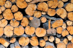 Pile of round firewood