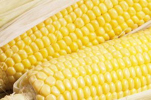 Corn cobs (maize)