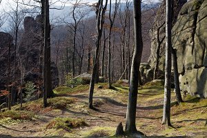 Large lofty stones in autumn forest