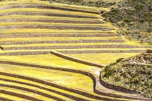 Ancient Inca circular terraces