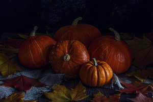 Autumn pumpkin with maple leaves