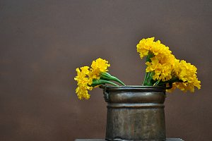 yellow flowers in copper cauldron