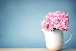 Sweet pink hydrangea flowers