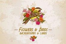 Flowers & Birds backgrounds & Cards