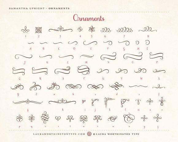 30 Extremely Legible Script Fonts Creative Market Blog