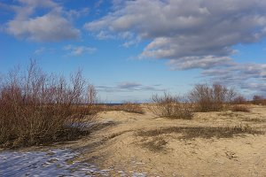 Sand dunes of the Baltic Sea. Spring