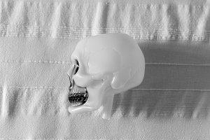 Skull for Halloween