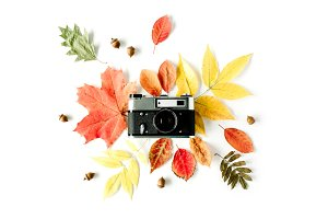 Retro camera & autumn composition