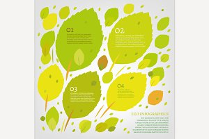 Leaves infographic