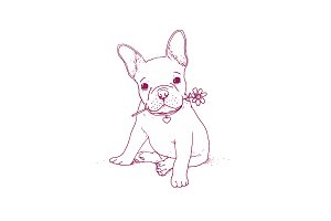 Frencg bulldog puppy illustration