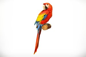 Ara parrot. Macaw. 3d vector icon