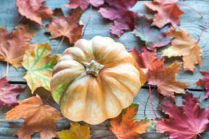 Pumpkin on the wooden background