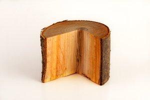 Cutout Wooden Log