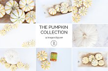 Pumpkin Styled Stock Images