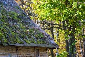 Ukrainian country wooden hut