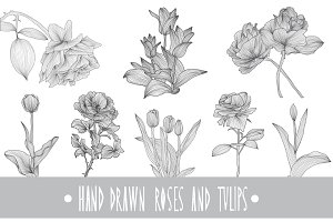 Roses and Tulips Set