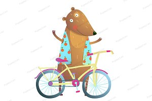 Teddy Bear Bicycle sport