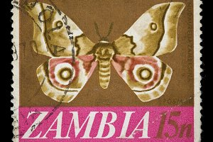 Zambia Postage Stamp