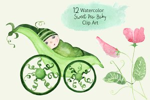 12 Watercolor Sweet Pea Baby ClipArt