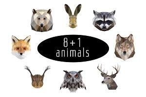 8+1 animals