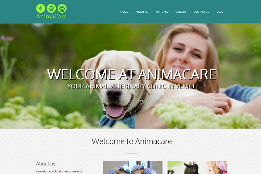 Animacare - WP Veterinarian