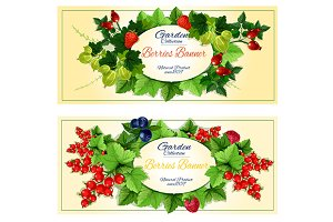 Garden fruits and berries banners