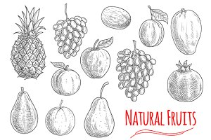 Natural fruits sketches