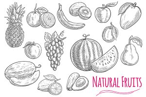 Fruits isolated sketches