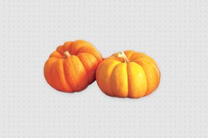 2 Pumpkins, side-view