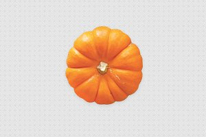 Top view of Mini Pumpkin