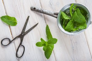 Fresh mint leaves in an old drainer