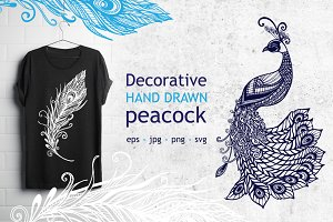 Fancy hand drawn Peacock set