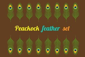 Peacock feather set collection.