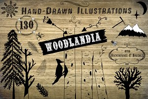 Woodlandia Hand Drawn Illustrations