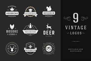 9 Vintage Logotypes or Badges