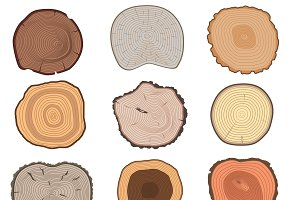 Wood slice texture vector set