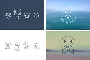 Animals. Fox, wolf, deer, owl.