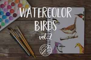 9 Vector Watercolor Birds vol. 2