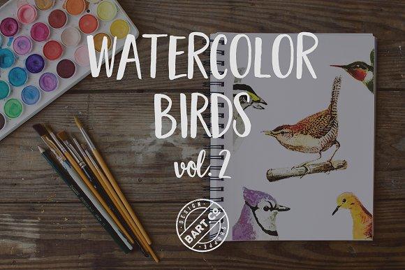 9 Vector Watercolor Birds vol. 2 - Illustrations