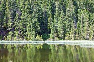 Summer alpine lake